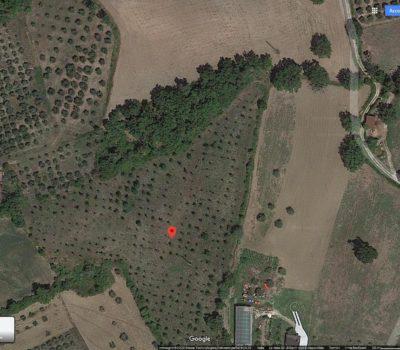 Terreno agricolo a Senerchia 2498