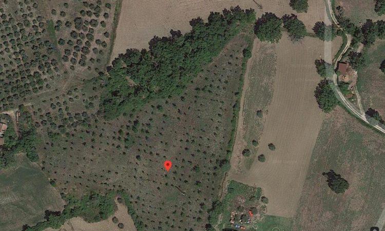 Terreno agricolo a Senerchia 2498 - Tutte le immagini